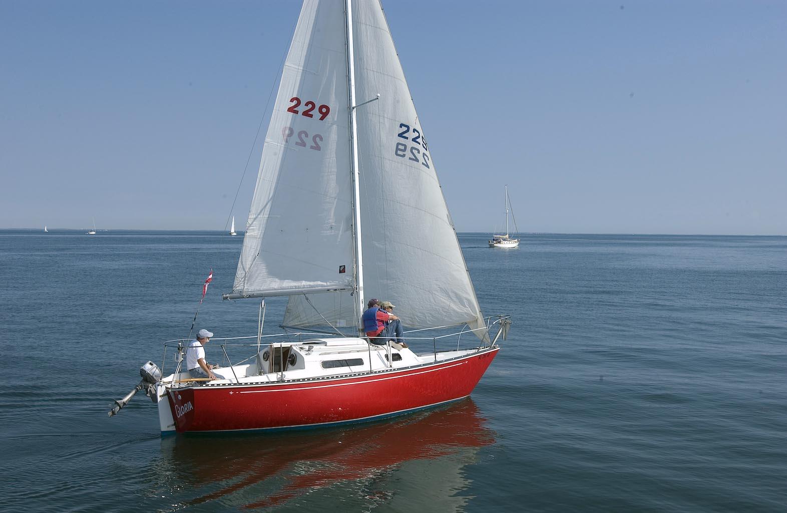 Good Food For Sailing