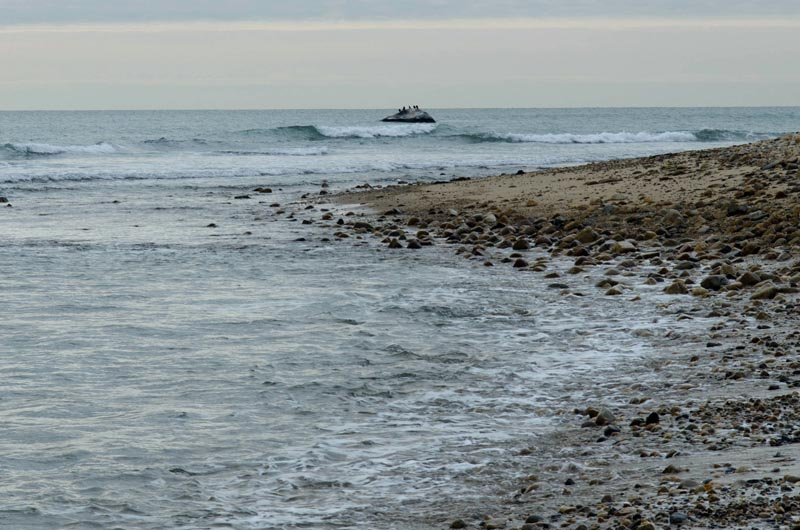 After Long Public Review Plan For Squibnocket Beach Heads To The Voters