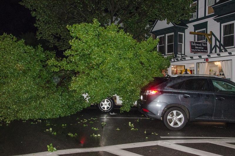 Downed tree limb blocked Circuit avenue Tuesday night. Steve Myrick
