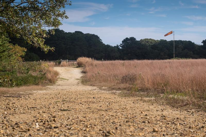 Martha S Vineyard Nature Preserve