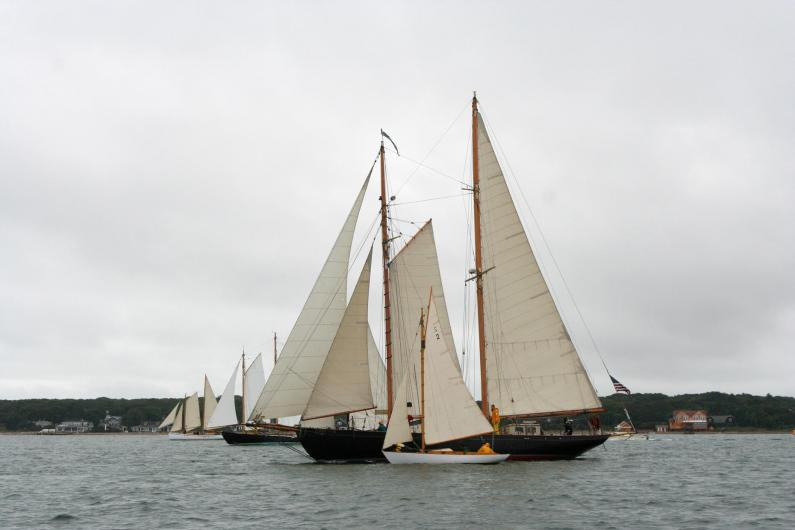 sailboats in the race