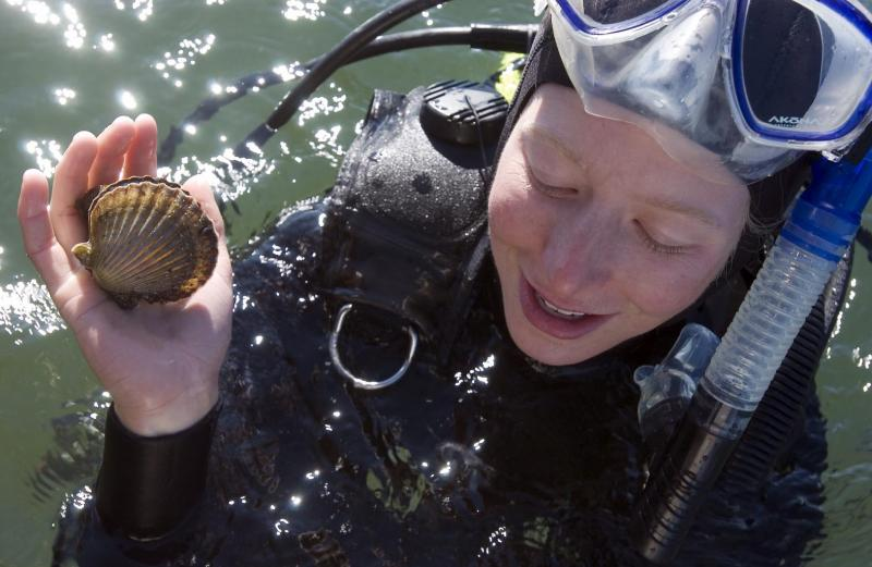 Jessie Kanozak diving for scallops