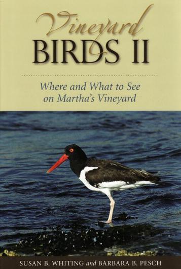 Vineyard Birds II