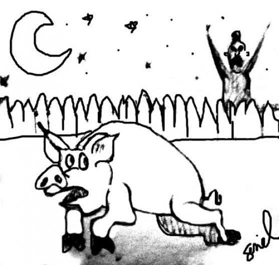 Seniel Seward Cartoon