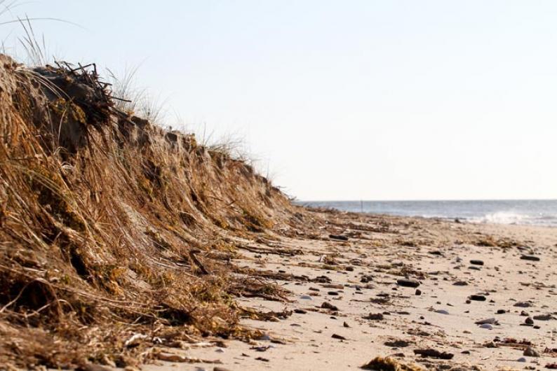 Wasque low tide beach