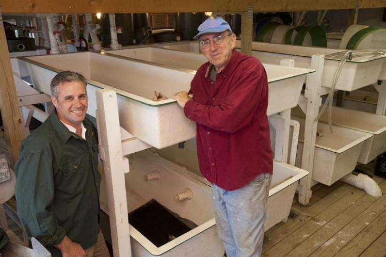 shellfish hatchery Bret Stearns Warren Doty
