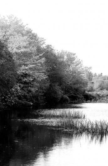 Mill Pond,