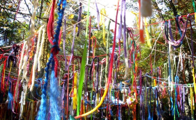 ribbons tree