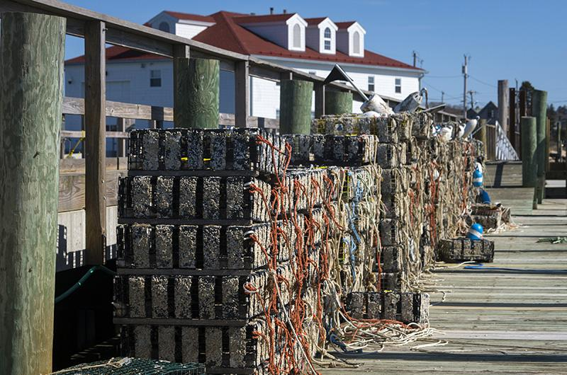 Menemsha docks, Chilmark, Martha's Vineyard