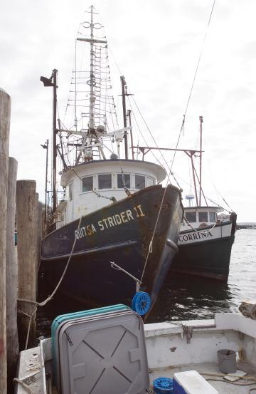 Quitsa Strider Menemsha Dock