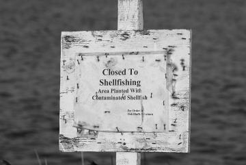 closed to shellfishing sign