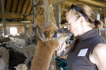 Barbara Ronchetti with alpaca
