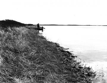 shorebound
