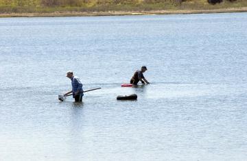 Clammers work in Sengekontacket pond.