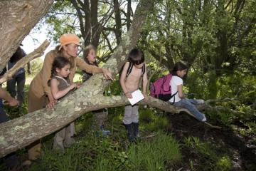 kids with nature