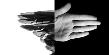 handfeathers