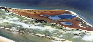 Cape Pogue Painting