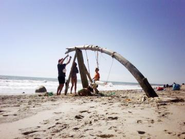 drift wood beach build sculpture