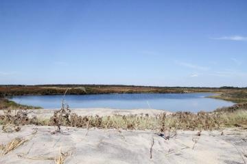 Pond Long Point Beach