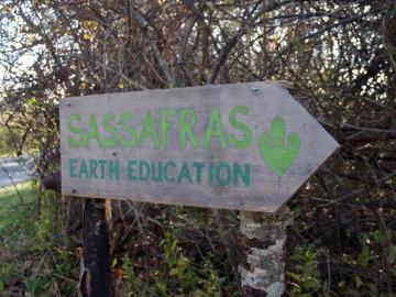 Sassafras sign arrow