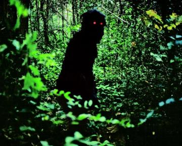 Uncle Boonmee forest monster