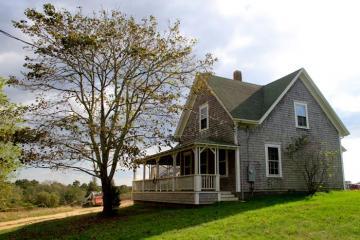 farmhouse tree lawn