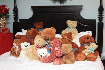 The Teddy Bear Suite Harborview bed
