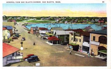 oak bluffs harbor vintage postcard