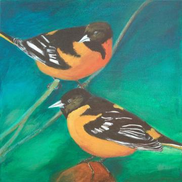 Baltimore orioles birds painting