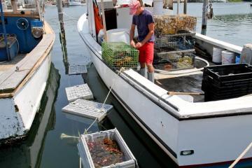 Menemsha lobsterman Wayne Iacono boat