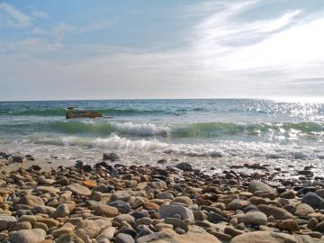 philbin beach