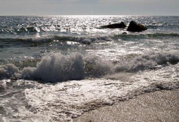 philbin beach alison mead