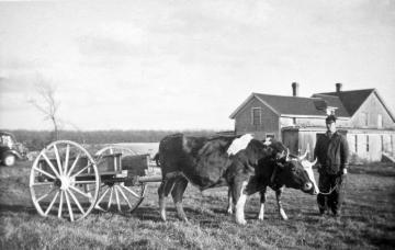 BW farmer house field cattle cart