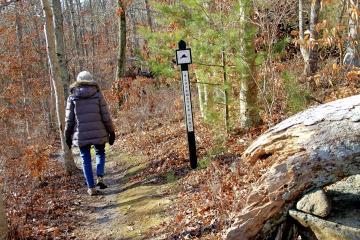 Lee Revere Land Bank Trail