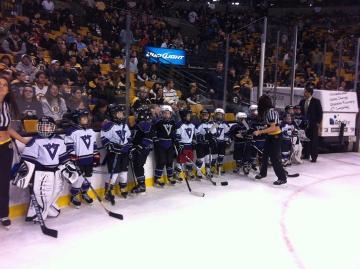 hockey rink fans