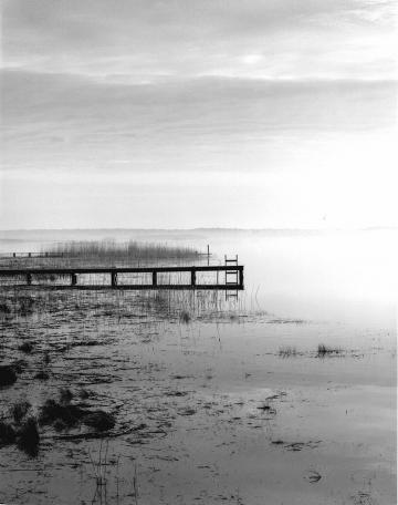 Chilmark Pond