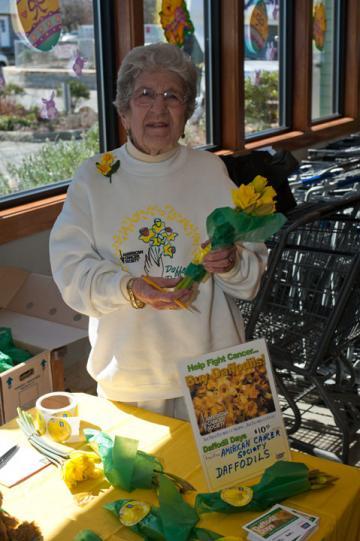 Dorothy Bangs daffodils
