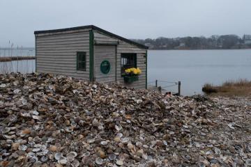 Fish shack