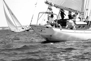 Juno sailboat crew BW