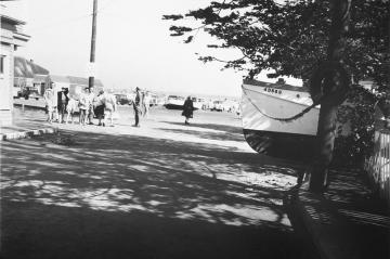 Hurricane Carol casts boats up on land.