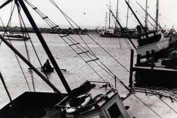 Menemsha fishing boats took a beating in Hurricane Carol
