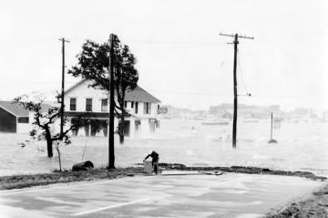 Hurricane Carol hits Oak Bluffs