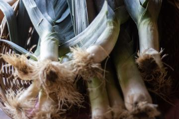 leeks in a basket, photo by Ray Ewing