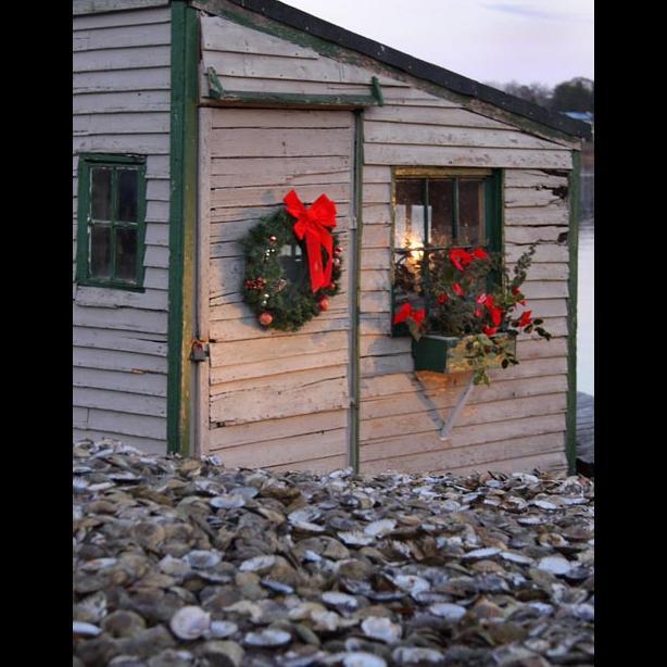 scallop shell shack Christmas wreath
