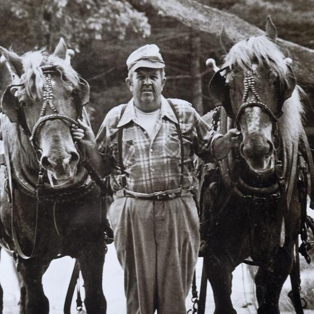 Fred Fischer horses