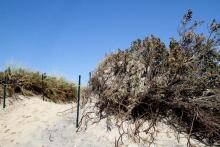 erosion Point Beach Long