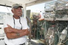 Bruce lobster trap fishing Borges