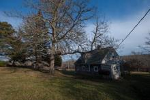 Tea Lane Farm