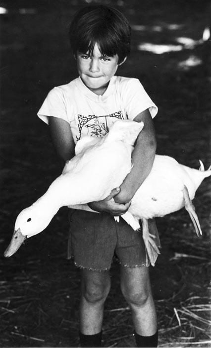 kid holding a goose