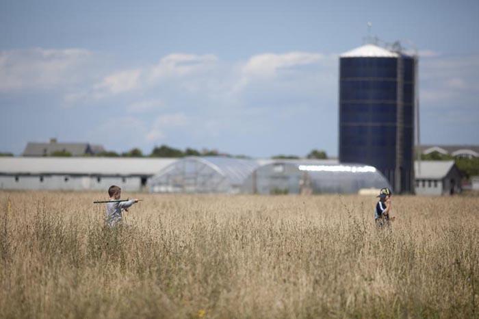 children walking through a farm